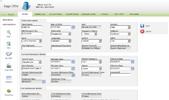CRM Implementation portfolio screenshot for patient profile